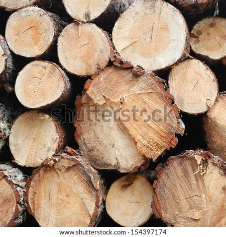 pile of wood - stock photo