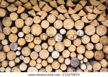 Pile of wood in different shapes and colors