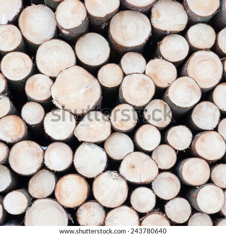Pile of wood logs - stock photo