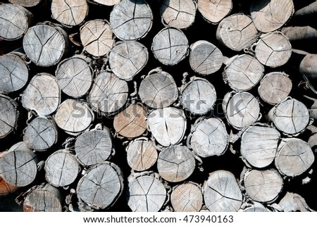 Pile of wood logs Background.