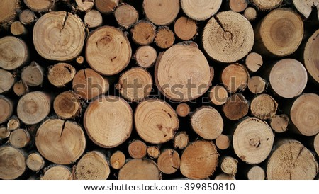 Pile of wood logs stumps for winter - stock photo