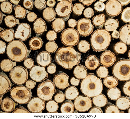Pile of wood logs. Wood logs texture background - stock photo
