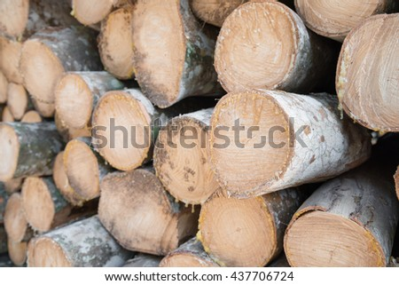 Pile of wood, Raw wood for apply firewood as a renewable energy source - Selective focus.