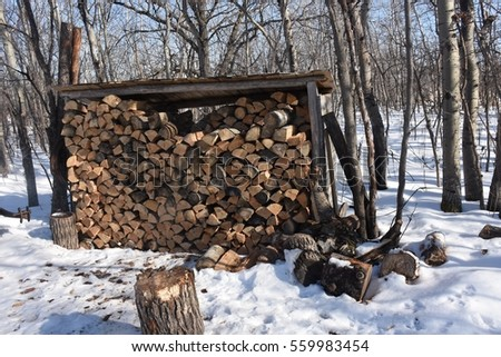 pile of wood stacked in winter cabin