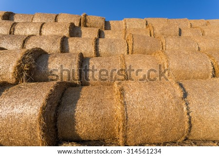 Piled hay bales on a field against blue sky at sunset time