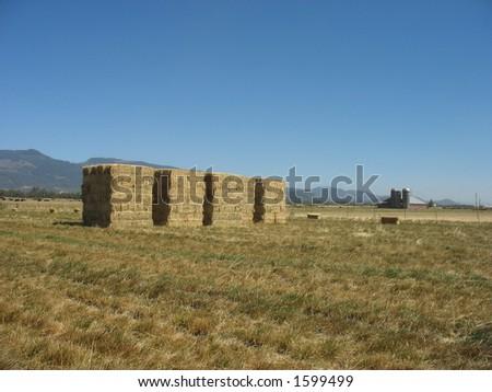 Piles of freshly stacked hay - stock photo