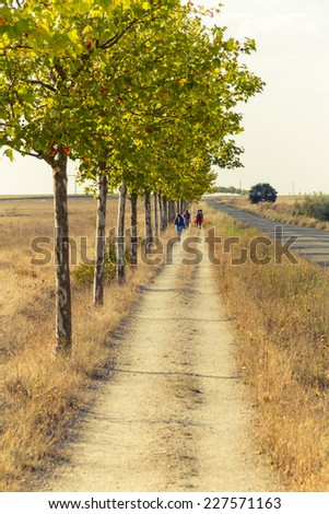 Pilgrims walking the Way of St. James passes through the province of Leon. Photographic treatment with warm tones