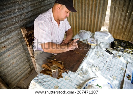 Pinar del Rio, Cuba - 2012, November 30 : A man who is manufacturing a cigar from dried tobacco leaves, Pinar del Rio, Cuba