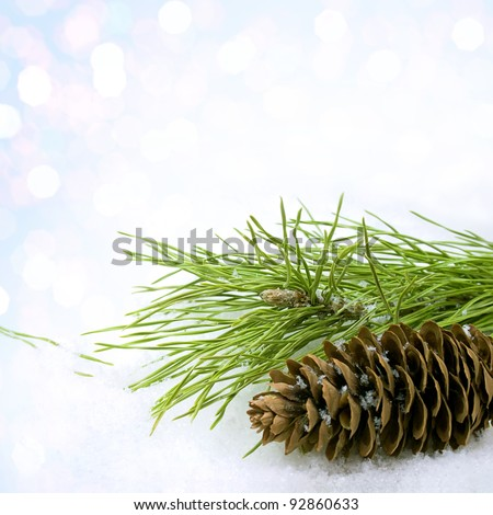 Pine branch and pine cone in snow - stock photo