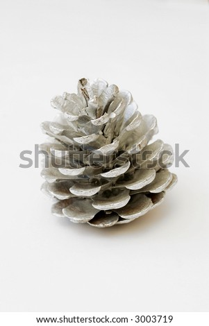 pine cone painted on silver
