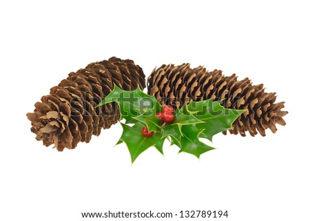 Pine cones and holly - stock photo