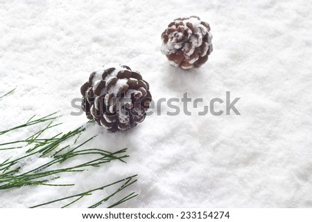 pine cones decoration stain snow background - stock photo