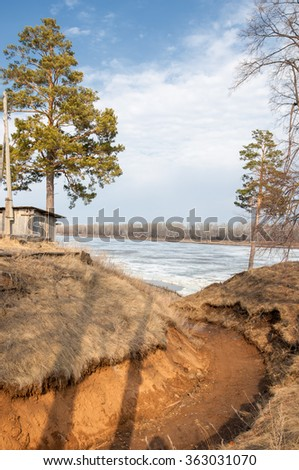 Pine forest in spring. River ice.  the season of spring. spring, springtime, springtide, prime. the season after winter and before summer, in which vegetation begins to appear,  - stock photo
