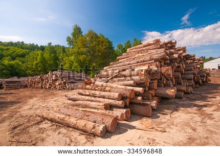 Pine logs stacked at lumber mill in Ontario, Canada - stock photo