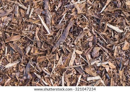 Pine tree bark chip background texture - stock photo