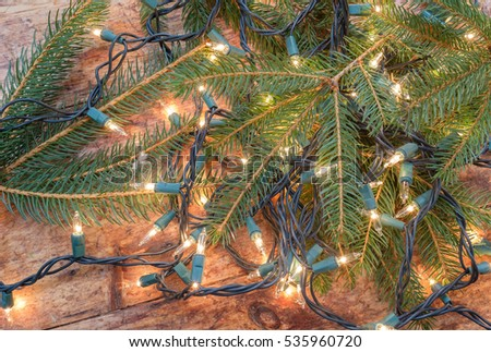 Pine tree bows on a solid wood floor entangled in white Holiday Christmas light strands