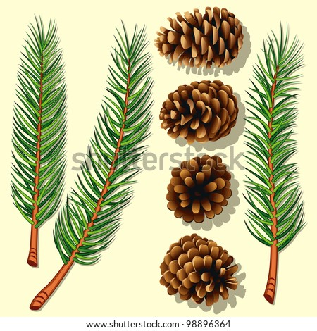 Pine Tree Branches and Cones. Rasterized Version - stock photo