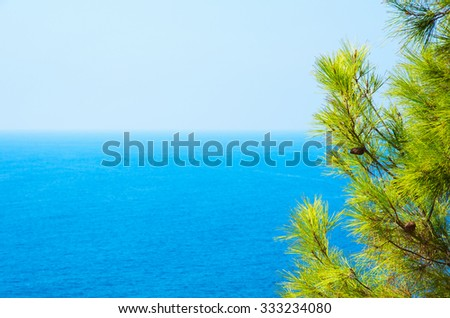 Pine tree branches with turquoise sea background, mediterranean nature - stock photo