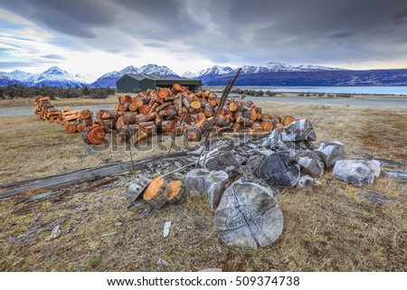 Pine tree log for fire wood at at Glentanner holiday park, Mount Cook, New Zealand