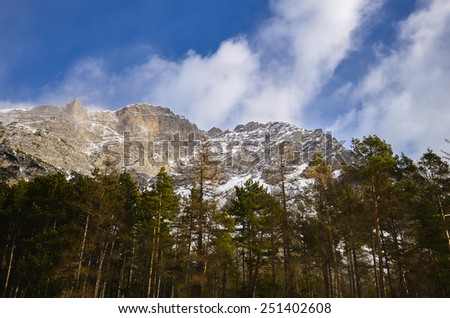 Pine trees and high mountains in the Alps - stock photo