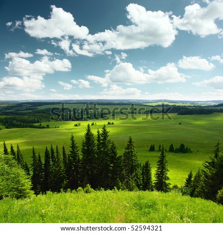 Pine trees green meadows and blue sky with clouds - stock photo