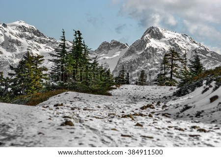 Pine trees on the snow-covered path, ice and snow enveloping the mountains  - stock photo