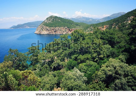 Pine trees on the southern coast of Turkey. Calm blue sea and clear sky. View of Mediterranean Sea from Cape Gelidonya.  Spring sunny day in Antalya province, Turkey. - stock photo