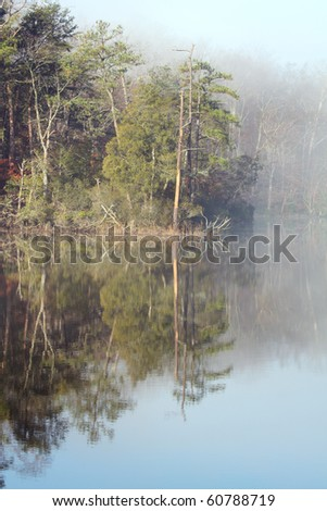 Pine trees reflecting off the water of College Creek on a misty morning near Williamsburg, Virginia vertical - stock photo