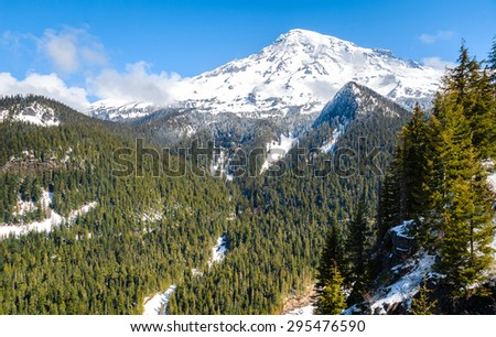 Pine Valley at Mount Rainier National Park - stock photo
