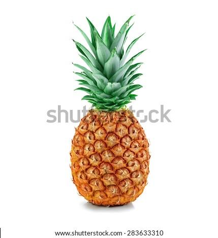 грудь, тонкая дали папуасам лимонки сказали новый вид ананаса упала, очнулась