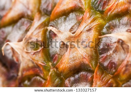 pineapple peel full frame closeup