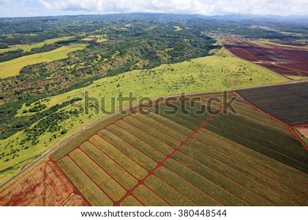 Pineapple plantation - view from helicopter - Oahu, Hawaii - stock photo