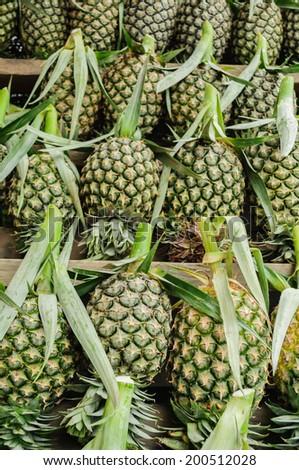 pineapples array  on shelf ready to sale - stock photo