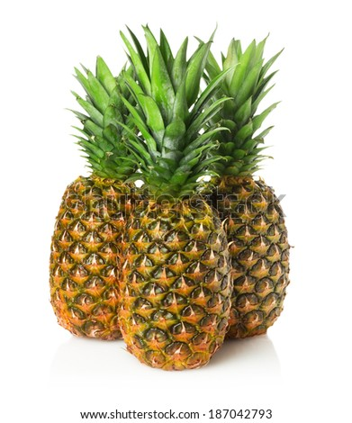 pineapples on the white background