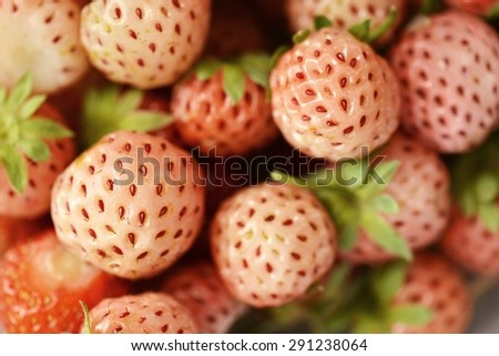 pineberry - stock photo