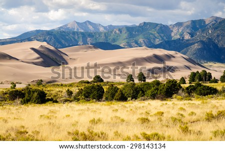 Pines and Dunes with Mountains at Great Sand Dunes National Park - stock photo