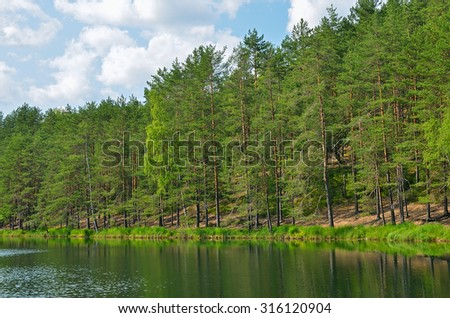 Pines on lake near Saint Petersburg, Russia - stock photo