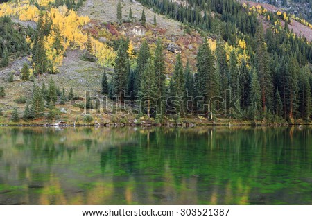 Pines reflecting in a lake, Colorado, USA.
