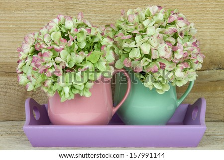 pink and green coffee mug filled with hydrangea flower on a serving tray - stock photo