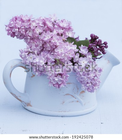 pink and purple lilac flowers boquet in a blue terracotta watering can on a blue background - stock photo