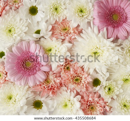 Pink and white flowers arranged to fill page, creating a background texture