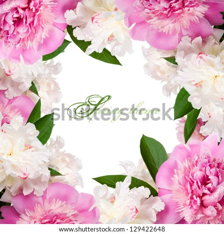 Pink and white peonies frame with copy space - stock photo