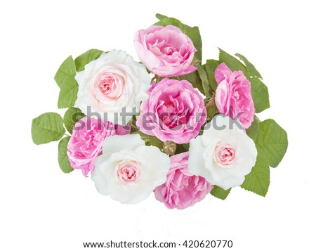 Pink and white rose flowers bunch isolated on white background