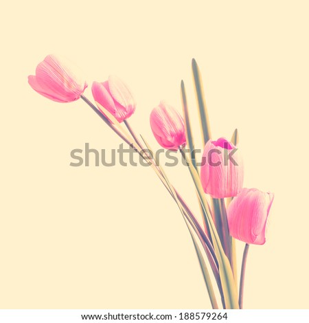 Pink artificial tulip flowers with retro filter effect - stock photo