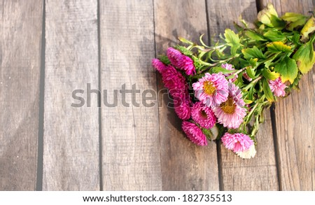 Pink aster flowers over wooden background