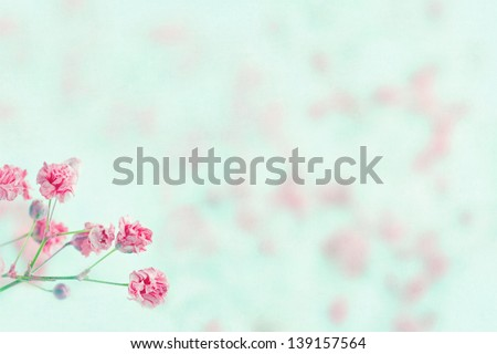 Pink baby's breath flowers on light blue pastel shabby chic textured background and copy space, soft and delicate floral pattern - stock photo