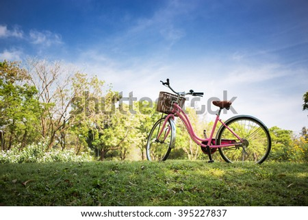 Pink bicycle in the park