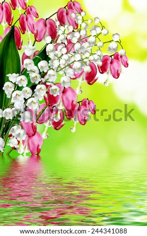 pink bleeding heart flower - stock photo