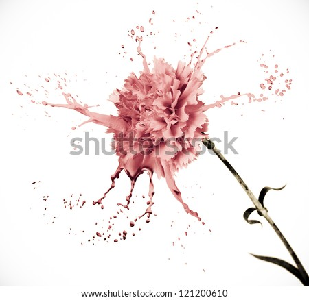 pink carnation on white isolated background with paint splash - stock photo