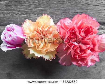 pink carnation,yellow carnation,red carnation,carnation flower on wood background - stock photo